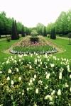 Regent Park fleur